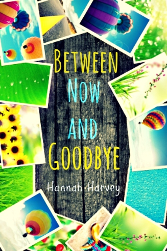 Between Now and Goodbye final - Copy